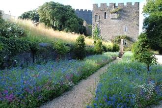 The Garden Came First: Trematon Castle, Cornwall, UK